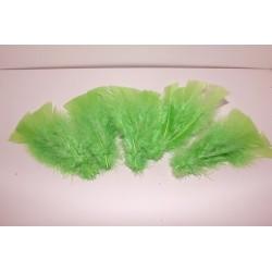 Fjäder Grön
