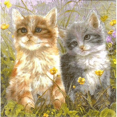 Diner napkins Cats