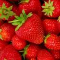 Diner napkins Strawberries