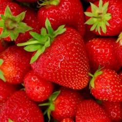 Matservett Jordgubbar