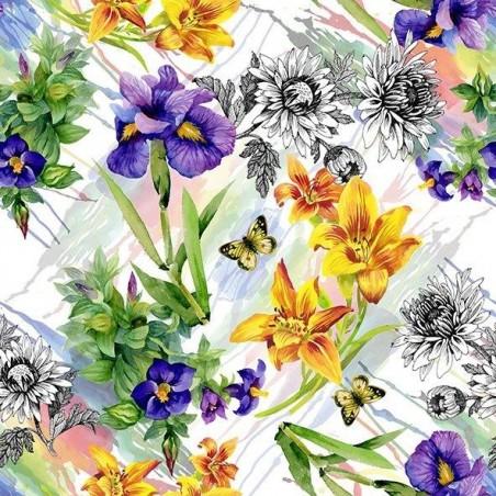 Matservett Iris Fantasy