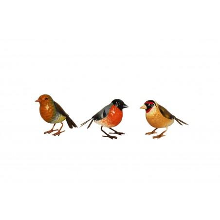 Fågeln Marita