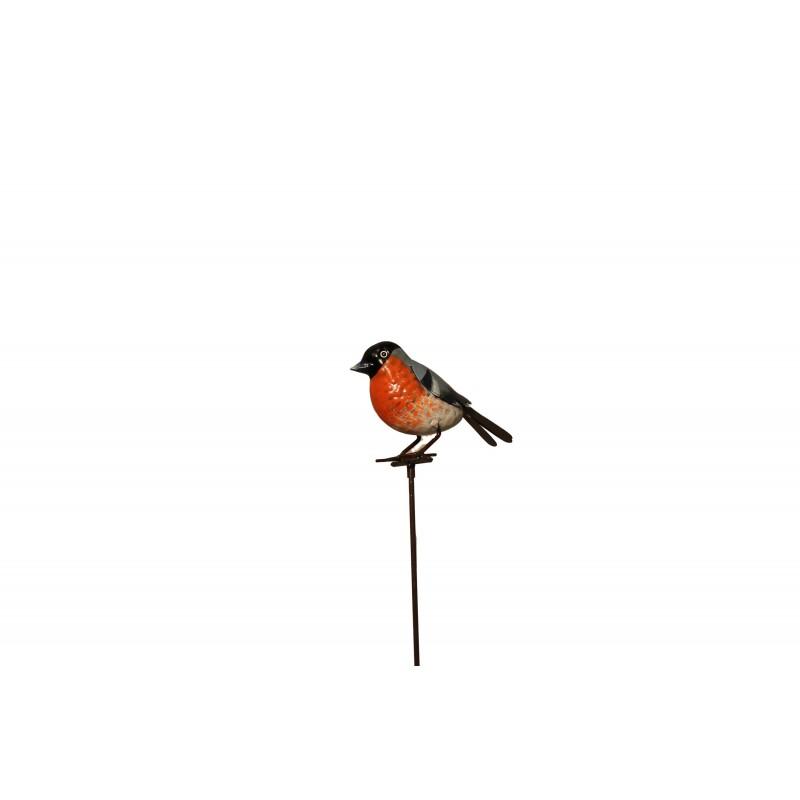 Fågeln Käll